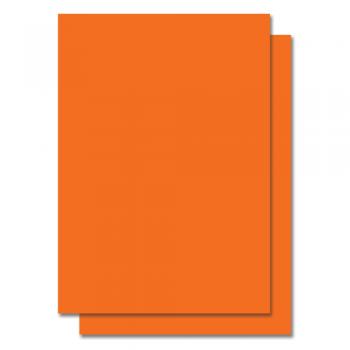 Fluorescent Color Label Sticker - A4 size - 100 sheets - Orange (Item No: C01-05 ORG)